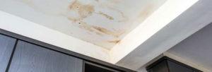 Comme pour la plupart des types de services professionnels, le recrutement d'une entreprise de restauration après dégâts des eaux présente beaucoup d'avantages.